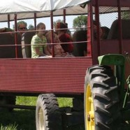 Maine Farm Days- August 21st & August 22nd