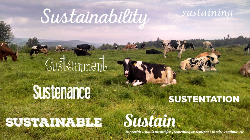 sustain cows