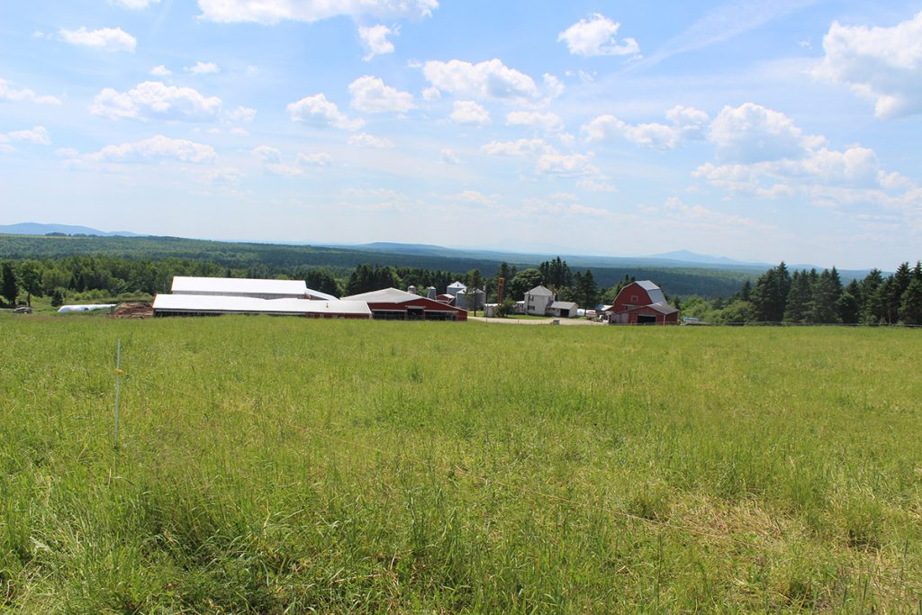Lilley Farms is set among wide open fields with views of the surrounding mountains.