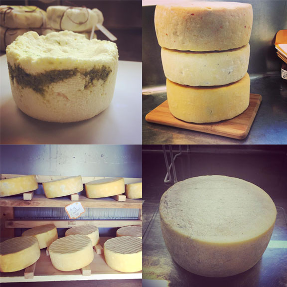 An array of Crooked Face Creamery cheeses.
